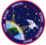 201px-sts-99-patch.png